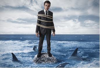 Business lessons from shark tank
